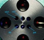Mögliche Positionierung von Masterpoints in den inneren Bohrungen, hier am Beispiel eines Ok-Molaren